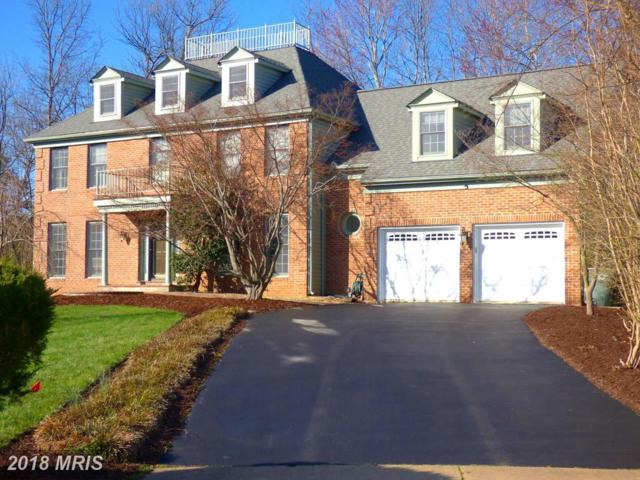 2601 Paddock Gate Court, Herndon, VA 20171 (#FX10218540) :: Pearson Smith Realty