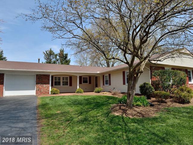 13104 Pebble Lane, Fairfax, VA 22033 (#FX10219149) :: Pearson Smith Realty