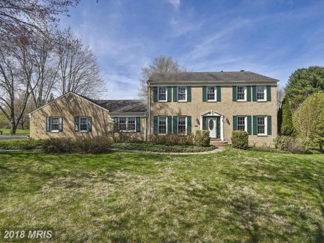 334 Club View Drive, Great Falls, VA 22066 (#FX10219269) :: The Putnam Group