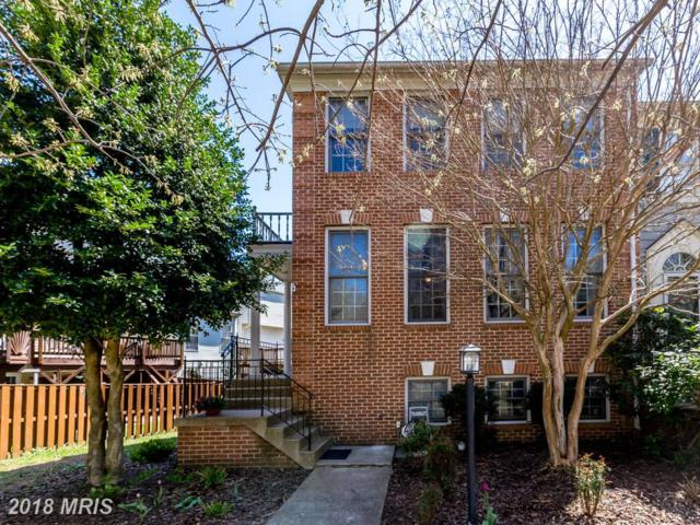6701 Royal Thomas Way, Alexandria, VA 22315 (#FX10219615) :: The Withrow Group at Long & Foster