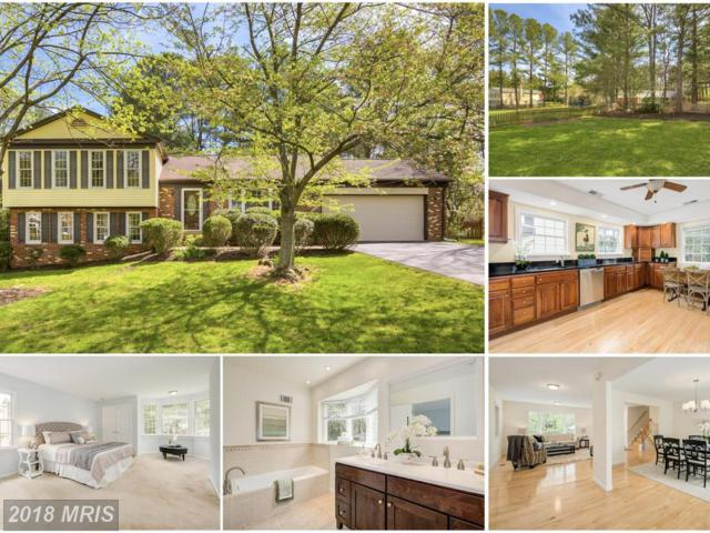 9404 Myra Drive, Great Falls, VA 22066 (#FX10220320) :: Advance Realty Bel Air, Inc