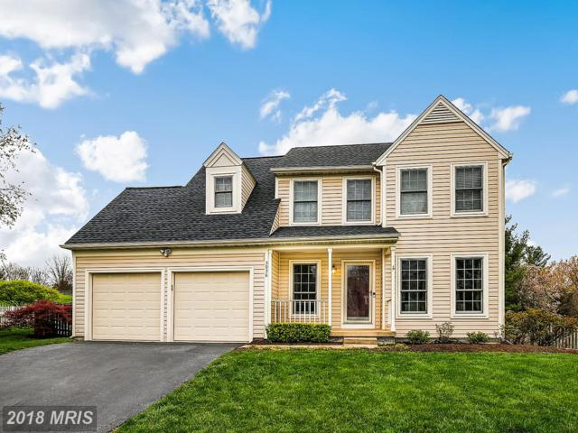 3036 Emerald Chase Drive, Herndon, VA 20171 (#FX10220864) :: The Putnam Group