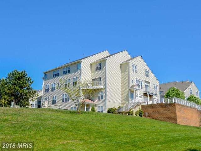 6327 Eagle Ridge Lane #48, Alexandria, VA 22312 (#FX10226543) :: The Bob & Ronna Group