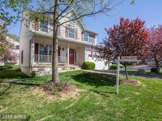 5634 Flagler Drive, Centreville, VA 20120 (#FX10227994) :: The Withrow Group at Long & Foster