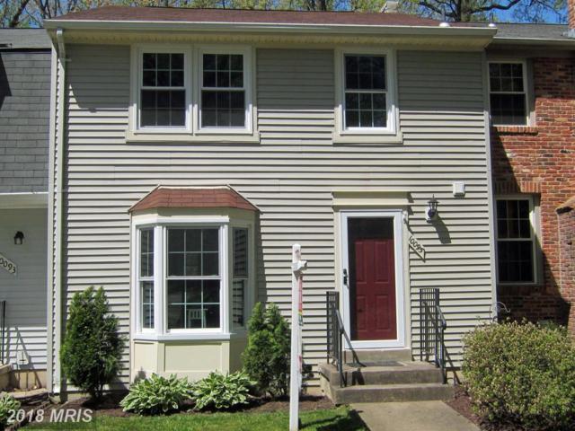 10095 Chestnut Wood Lane, Burke, VA 22015 (#FX10228076) :: Eng Garcia Grant & Co.