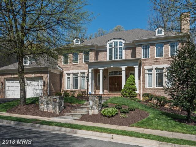 11082 Pelham Manor Place, Reston, VA 20194 (#FX10229755) :: Berkshire Hathaway HomeServices