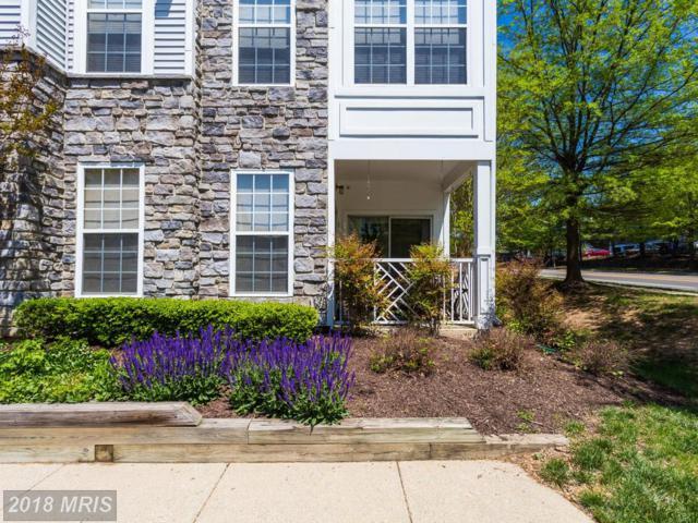5963 Founders Hill Drive #104, Alexandria, VA 22310 (#FX10231157) :: Dart Homes