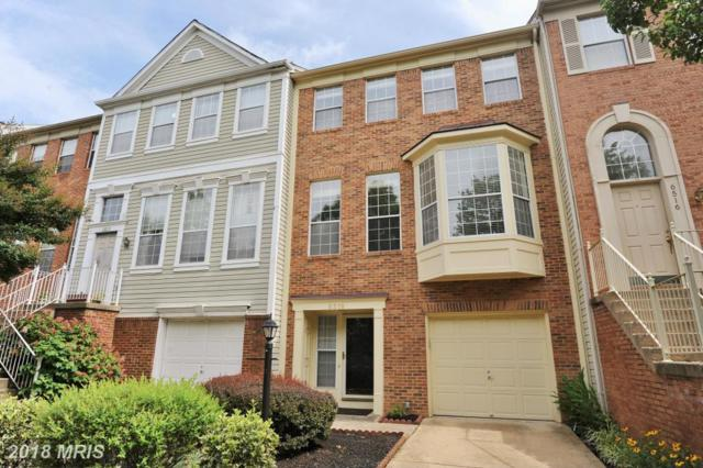 6518 Osprey Point Lane, Alexandria, VA 22315 (#FX10234024) :: The Withrow Group at Long & Foster