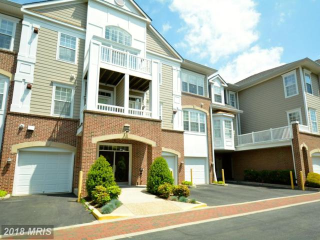 7871 Rolling Woods Court #101, Springfield, VA 22152 (#FX10234813) :: The Greg Wells Team