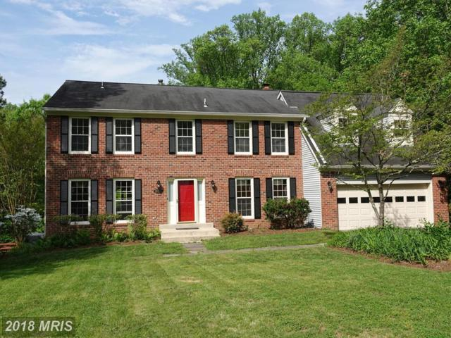 10295 Dunn Meadow Road, Vienna, VA 22182 (#FX10236651) :: The Belt Team