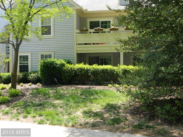 2220 Springwood Drive 109B, Reston, VA 20191 (#FX10237032) :: Pearson Smith Realty