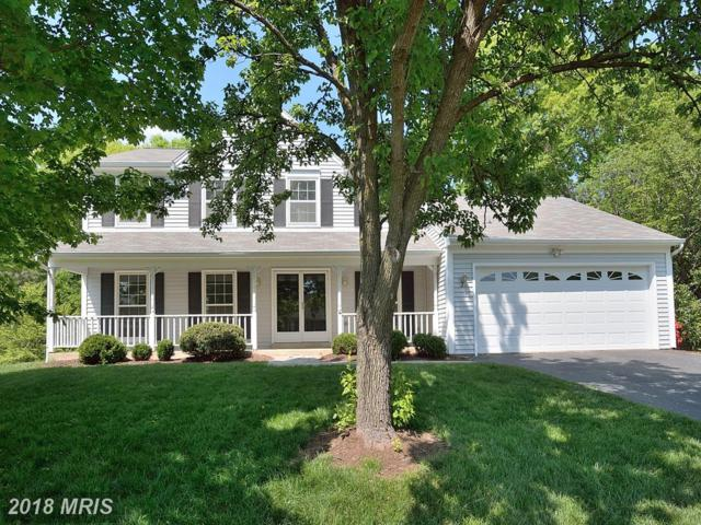 13406 Sand Rock Court, Chantilly, VA 20151 (#FX10237108) :: The Withrow Group at Long & Foster