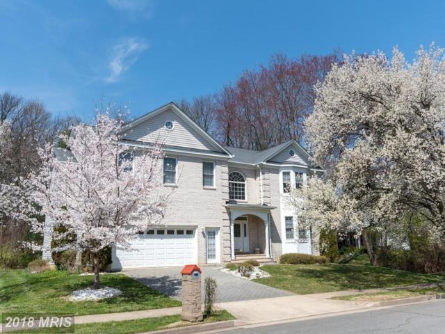 214 Elmar Drive SE, Vienna, VA 22180 (#FX10237947) :: The Greg Wells Team