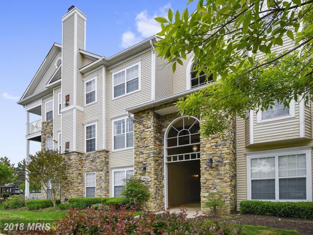 5901 Founders Hill Drive #302, Alexandria, VA 22310 (#FX10238536) :: Dart Homes