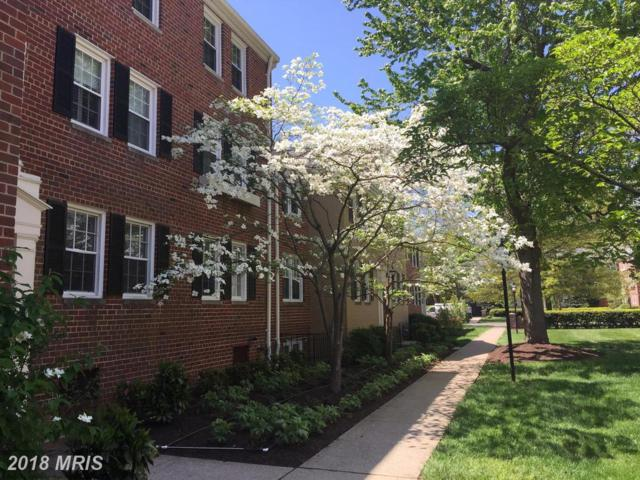 6716 Wakefield Drive W A2, Alexandria, VA 22307 (#FX10239429) :: The Withrow Group at Long & Foster