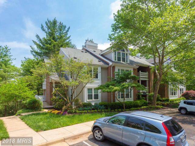 11178 Beaver Trail Court #11178, Reston, VA 20191 (#FX10241749) :: The Greg Wells Team