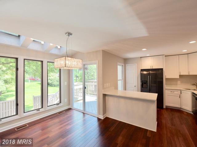 6055 Joust Lane, Alexandria, VA 22315 (#FX10242072) :: Browning Homes Group