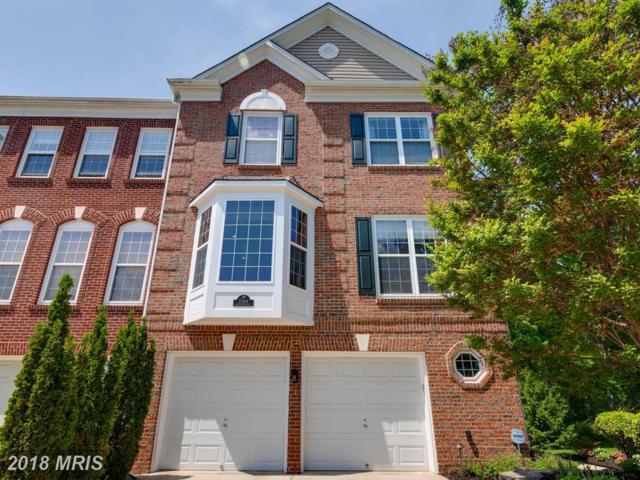 13416 Matthews Vista Drive, Centreville, VA 20120 (#FX10242609) :: Jim Bass Group of Real Estate Teams, LLC