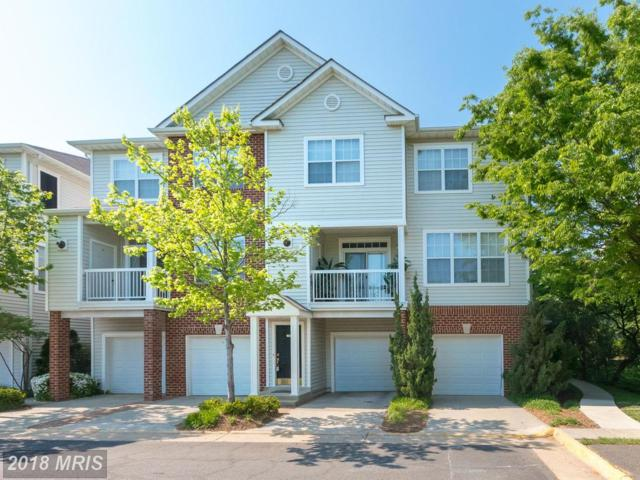 2435 Coopers Branch Court, Herndon, VA 20171 (#FX10243097) :: Circadian Realty Group