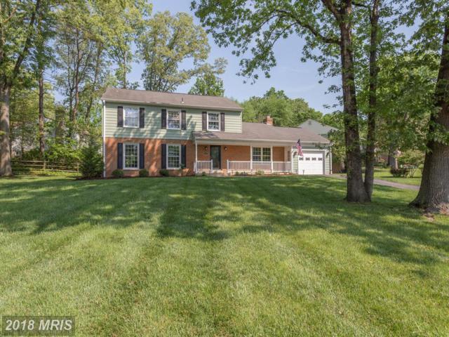 5408 Quincy Marr Drive, Fairfax, VA 22032 (#FX10243763) :: TVRG Homes
