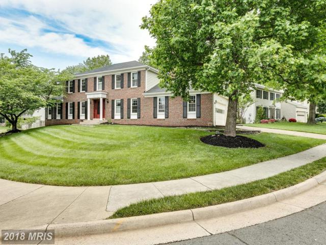 13726 Springstone Drive, Clifton, VA 20124 (#FX10244298) :: Browning Homes Group