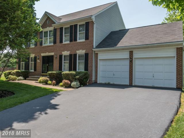 5668 Lonesome Dove Court, Clifton, VA 20124 (#FX10244433) :: Browning Homes Group