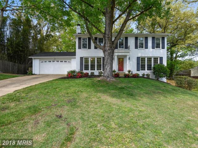 9902 Madrigal Way, Vienna, VA 22181 (#FX10244440) :: The Belt Team