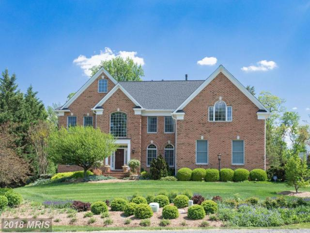 10305 Mystic Meadow Way, Oakton, VA 22124 (#FX10244442) :: Browning Homes Group