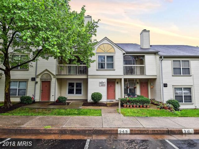 5812 Orchard Hill Lane #5812, Clifton, VA 20124 (#FX10245830) :: Browning Homes Group