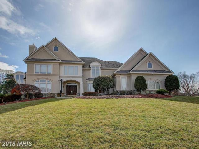 11303 Stones Throw Drive, Reston, VA 20194 (#FX10245925) :: Berkshire Hathaway HomeServices