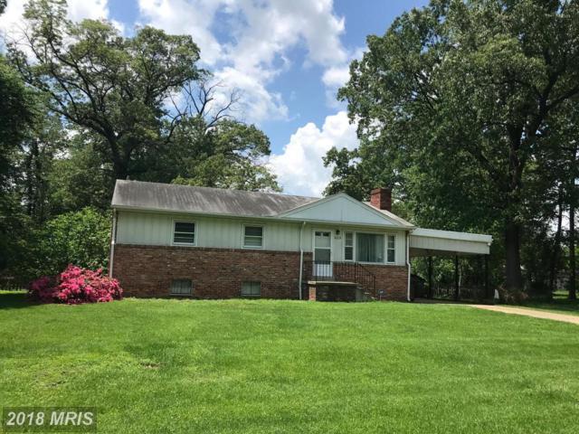 6216 Bernard Avenue, Alexandria, VA 22310 (#FX10246382) :: Labrador Real Estate Team