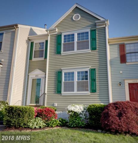 6013 Little Brook Court, Clifton, VA 20124 (#FX10246813) :: Browning Homes Group