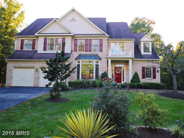 12121 Windsor Hall Way, Herndon, VA 20170 (#FX10246847) :: Berkshire Hathaway HomeServices
