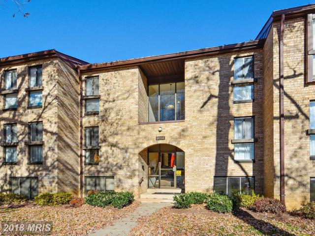 2044 Royal Fern Court 2A, Reston, VA 20191 (#FX10246962) :: Circadian Realty Group
