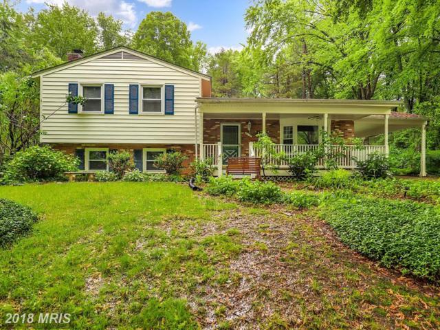 9119 Andromeda Drive, Burke, VA 22015 (#FX10247040) :: Browning Homes Group