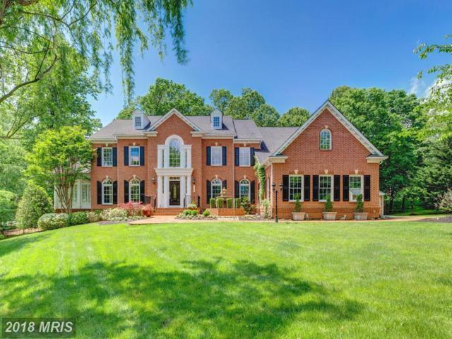 10023 Colvin Manor Court, Great Falls, VA 22066 (#FX10247350) :: Berkshire Hathaway HomeServices
