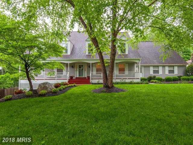 10330 Hickory Forest Drive, Oakton, VA 22124 (#FX10247753) :: Browning Homes Group