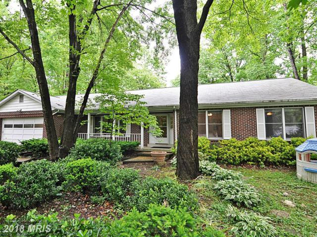 3339 Beechtree Lane, Falls Church, VA 22042 (#FX10248062) :: Arlington Realty, Inc.