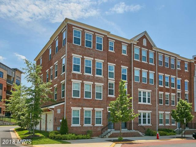 3073 Rittenhouse Circle #60, Fairfax, VA 22031 (#FX10248103) :: Circadian Realty Group