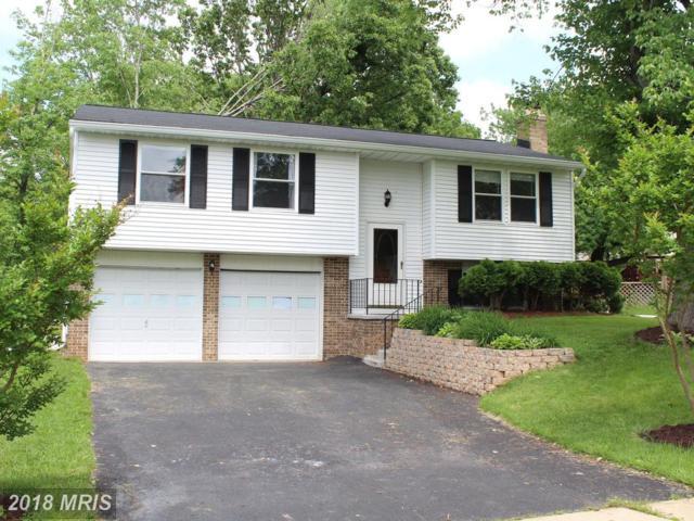 5817 Parakeet Drive, Burke, VA 22015 (#FX10248406) :: Browning Homes Group