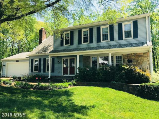 8109 W Point Drive, Springfield, VA 22153 (#FX10248473) :: Fine Nest Realty Group