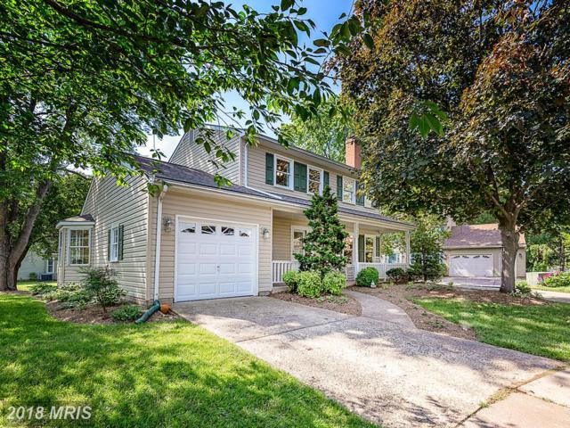 13603 Dairy Lou Court, Herndon, VA 20171 (#FX10248852) :: Jim Bass Group of Real Estate Teams, LLC