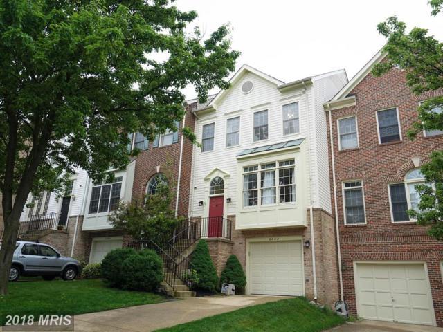 6002 Wendron Way, Alexandria, VA 22315 (#FX10248942) :: Colgan Real Estate