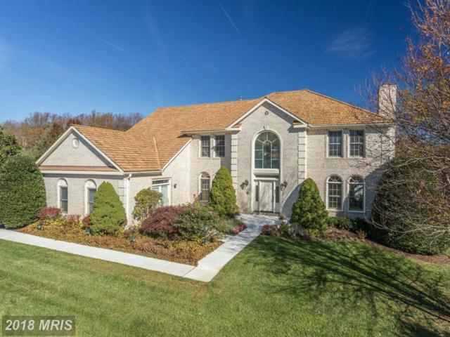 2107 Polo Pointe Drive, Vienna, VA 22181 (#FX10249103) :: Browning Homes Group