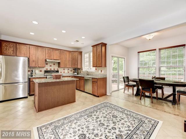8535 Bertsky Lane, Lorton, VA 22079 (#FX10249176) :: Browning Homes Group