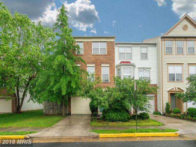 1203 Cypress Tree Place, Herndon, VA 20170 (#FX10249900) :: Town & Country Real Estate
