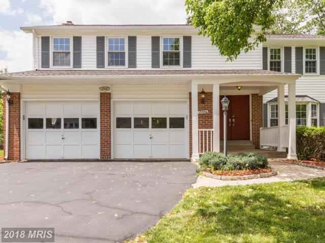 13550 Union Village Circle, Clifton, VA 20124 (#FX10250119) :: Browning Homes Group