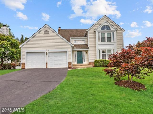 3651 Beech Down Drive, Chantilly, VA 20151 (#FX10250276) :: Labrador Real Estate Team