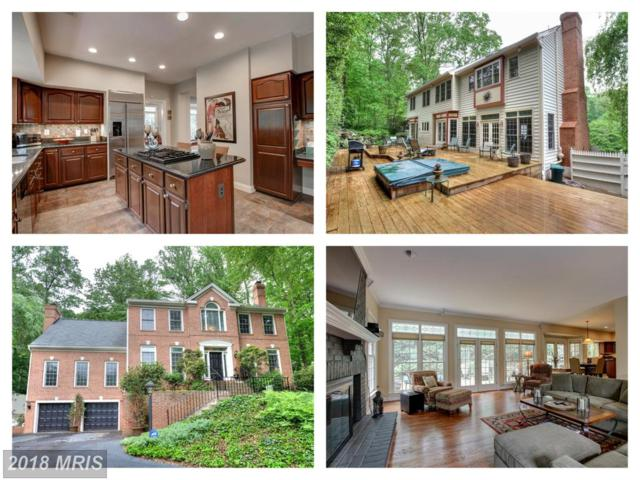 8245 Branch Road, Annandale, VA 22003 (#FX10250677) :: Colgan Real Estate