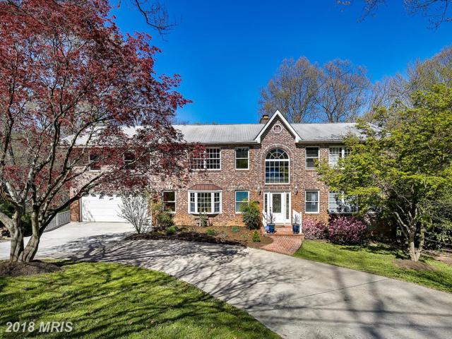 6532 Spring Valley Drive, Alexandria, VA 22312 (#FX10250725) :: AJ Team Realty